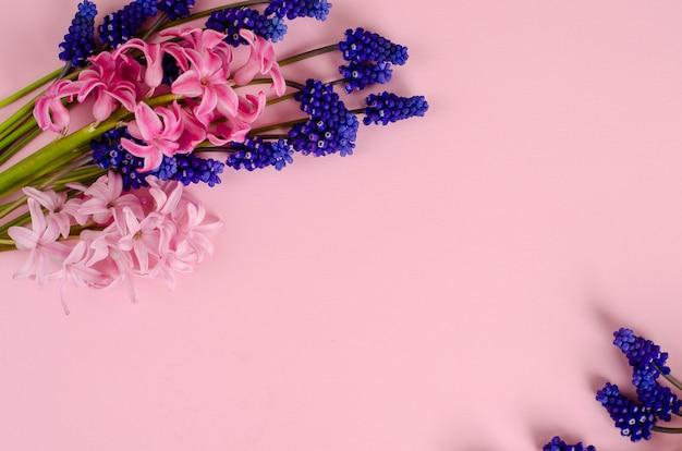 Różowe hiacyntowe i niebieskie kwiaty muscari na pastelowym różu