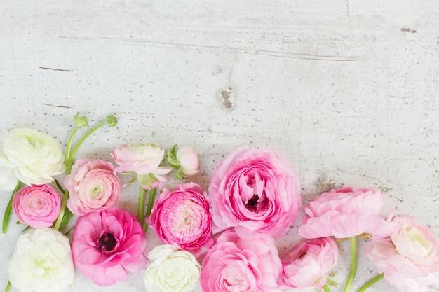 Różowe i białe kwiaty jaskier na białym drewnianym pulpicie wieku