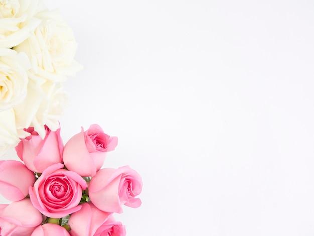 Różowe i białe kwiaty róży