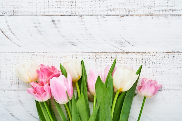 Różowe i białe tulipany na białym tle drewnianych.