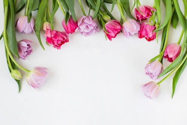 Różowe i fioletowe tulipany są oprawione w ramkę, a wolne miejsce na tekst.