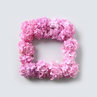 Różowe kwiaty hortensji jako kwadratowa ramka na szarym tle. floral karty z pozdrowieniami z miejsca na kopię. widok z góry.