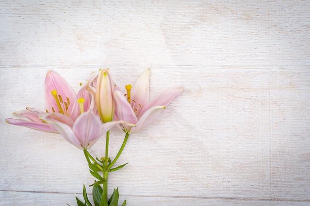 Różowe kwiaty lilii na białym tle drewnianych.