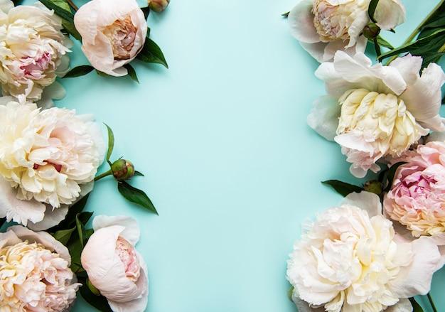 Różowe kwiaty piwonii jako obramowanie na pastelowy błękit