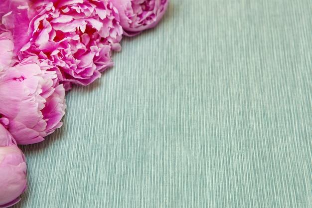 Różowe kwiaty piwonii na niebieskim tle rocznika kopia przestrzeń walentynki lub koncepcja dzień matki