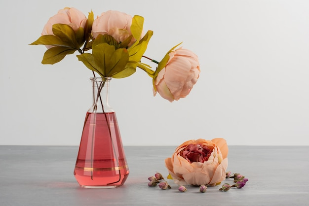 Różowe kwiaty piwonii róży w szklanym wazonie na szarym stole.