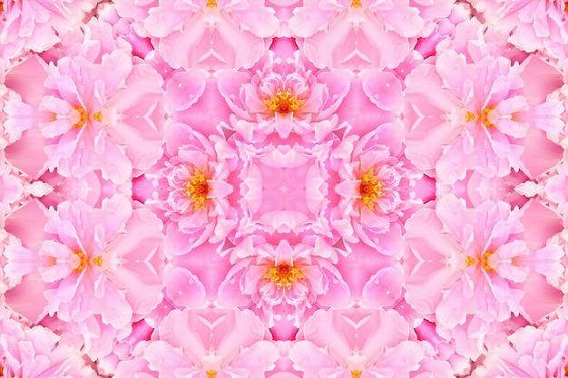 Różowe kwiaty róży niewyraźne, tło kwiatowy wzór wiosna