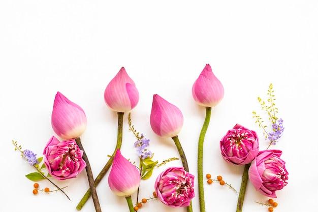 Różowe kwiaty układ lotosu mieszkanie leżał styl pocztówki
