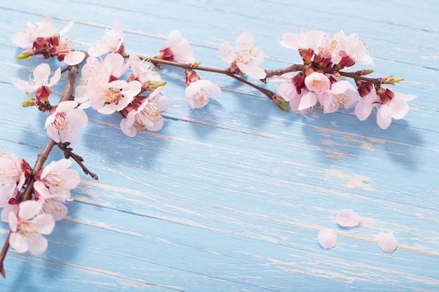 Różowe kwiaty wiśni na podłoże drewniane