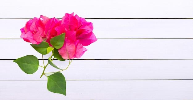 Różowe kwiaty z liśćmi na białych deskach