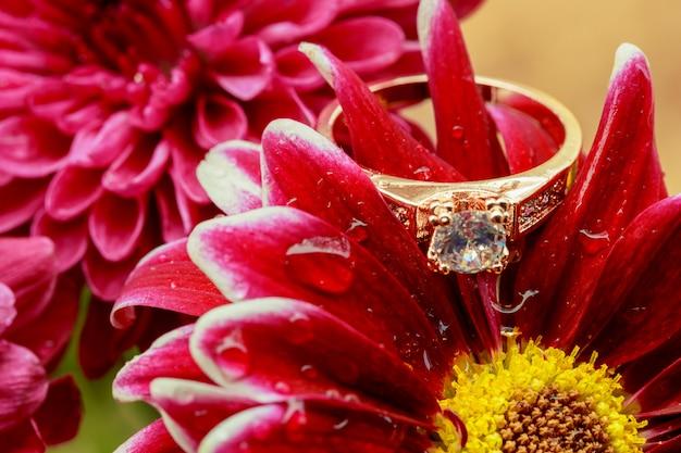 Różowe kwiaty z pierścionkami z brylantem na jasny
