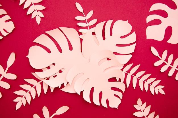 Różowe liście i monstera widok z góry