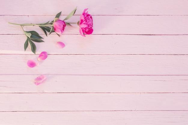 Różowe piwonie na drewnianej ścianie