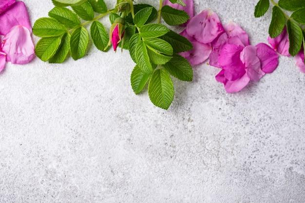 Różowe płatki biodrowe z liśćmi
