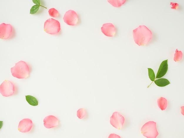 Różowe płatki róż z liśćmi na białym tle