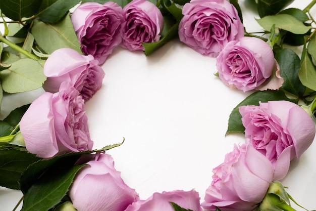 Różowe róże na białym tle. koło wieniec kwiatów. miłość romans piękna. negatywna koncepcja przestrzeni