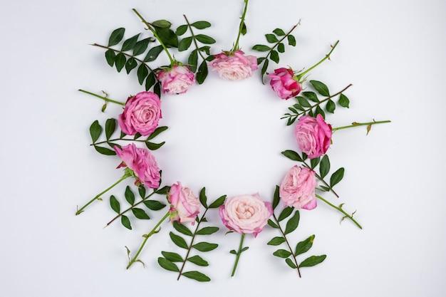 Różowe róże ułożone w okrągłym ramki na białym tle