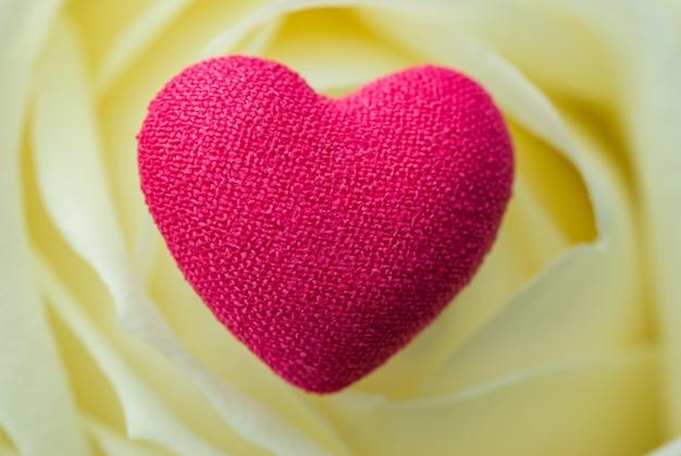 Różowe serce na płatkach żółtej róży makro