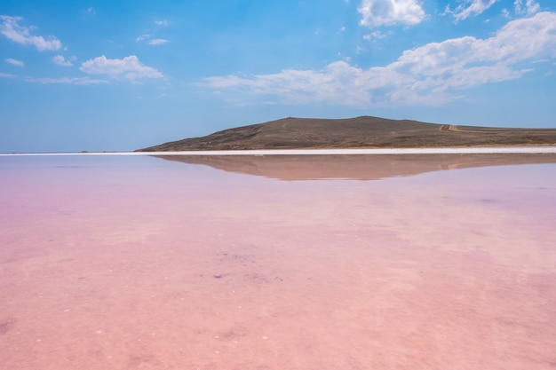 Różowe słone jezioro koyashskoe z odbiciem chmur