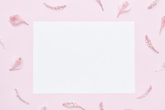 Różowe tło, biała kartka papieru na środku