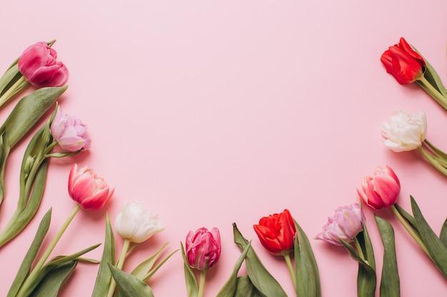 Różowe tło z tulipanów