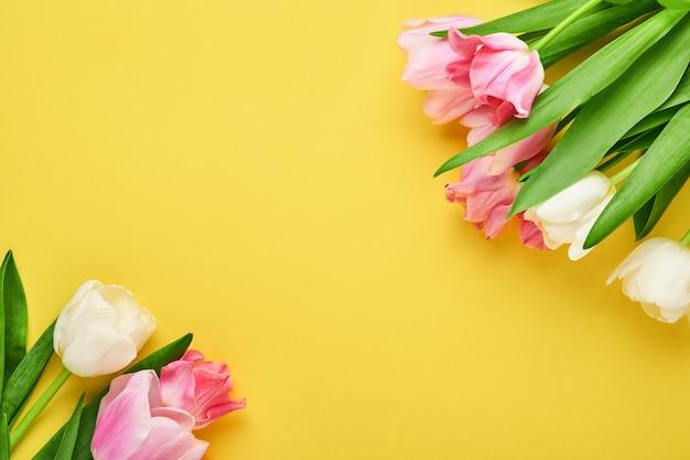 Różowe tulipany na różowym tle