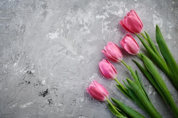 Różowe tulipany na szarym tle grunge. kwitnące wiosenne kwiaty, świeże dekoracje kwiatowe na romantyczne powitanie, zielona świeżość