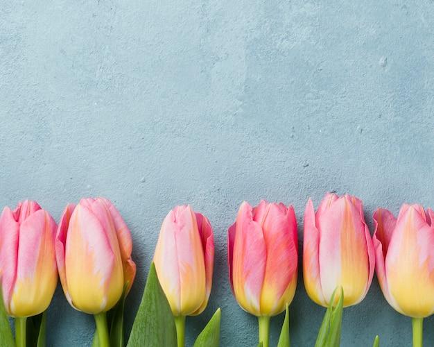 Różowe tulipany wyrównane na stole