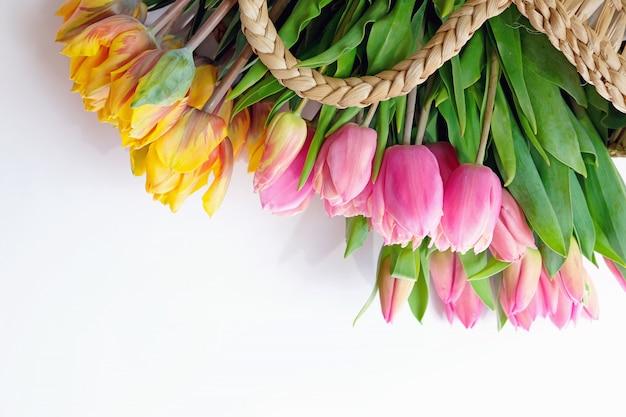 Różowi i żółci tulipany w słomianym backet na białym tle