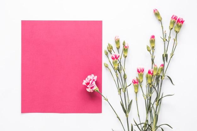 Różowi kwiaty z pustym papierem na stole
