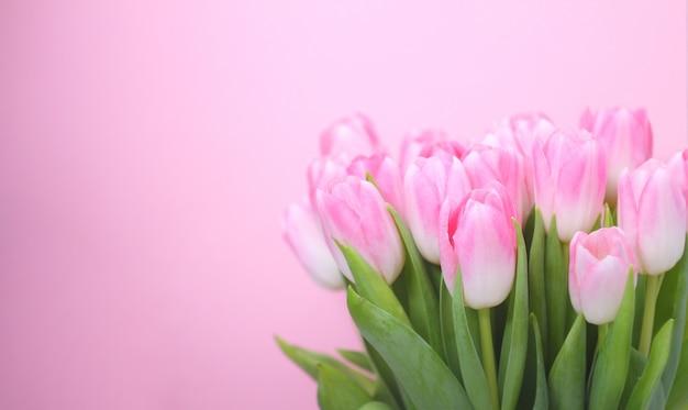 Różowi tulipany wielkanoc, wiosna kwiatu pojęcie, kopii przestrzeń.
