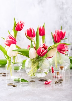Różowo-białe tulipany w szklanych wazonach na jasnoszarej powierzchni. prezent na dzień kobiety. kartkę z życzeniami na dzień matki
