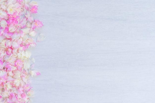 Różowy bougainvillea kwiat niebieski teksturowanej płytki, miejsce.
