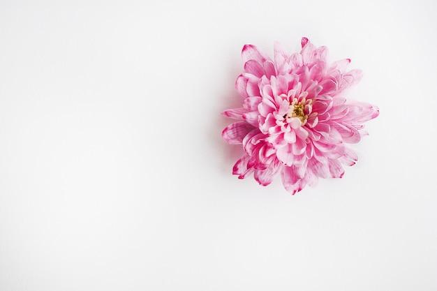 Różowy bukiet kwiatów