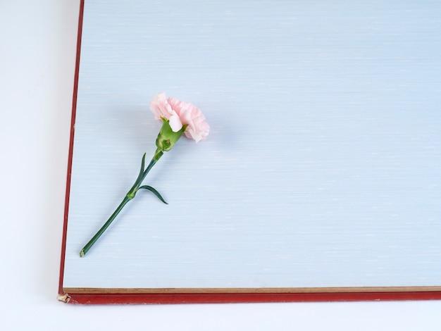 Różowy goździk na niebieskim notesie