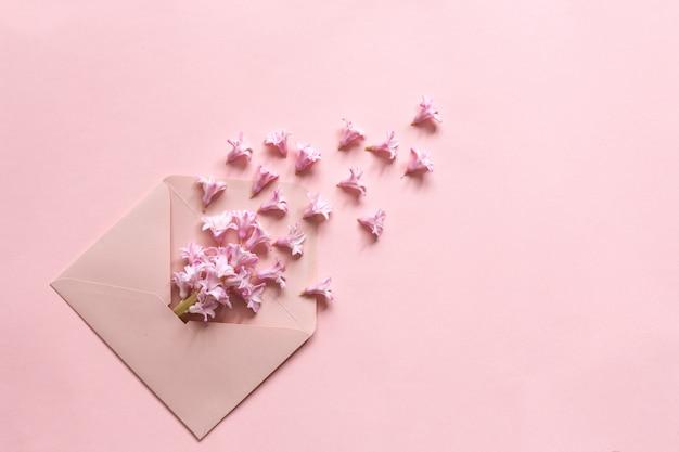 Różowy hiacynt w różowej kopercie na papierowym tle