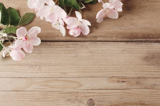Różowy jabłko kwitnie na starym drewnie