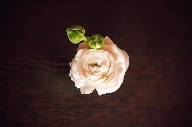 Różowy kwiat stoi na ciemnym drewnianym stole