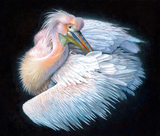 Różowy pelikan, realistyczny obraz akrylowy na czarnym tle