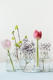 Różowy tulipan i świeże gałęzie brzozy zniekształcone przez płynną wodę w szklankach.