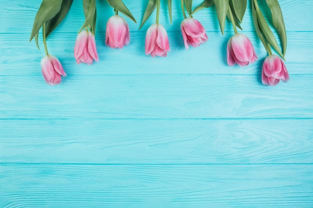 Różowy tulipanu bukiet na błękitnym drewnianym tle