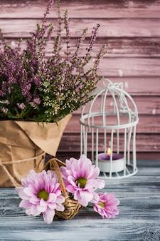 Różowy wrzos w doniczce, chryzantema ze świecami