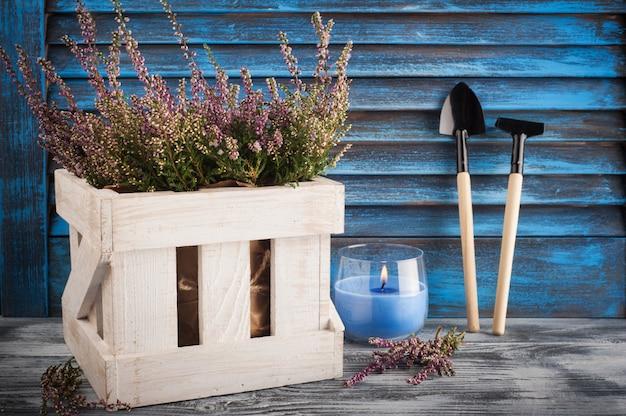 Różowy wrzos, zapalona niebieska świeca i narzędzia ogrodnicze