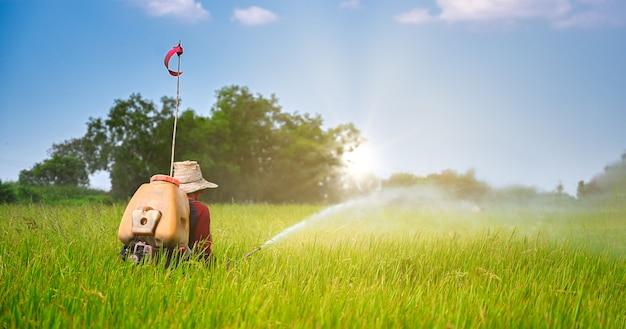 Rozpylanie pestycydów na polu do sadzenia ryżu
