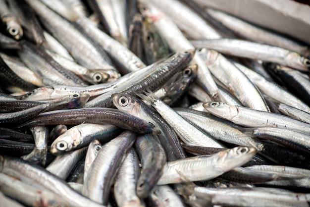 Rozsypisko ryba w zakończeniu w górę widoku
