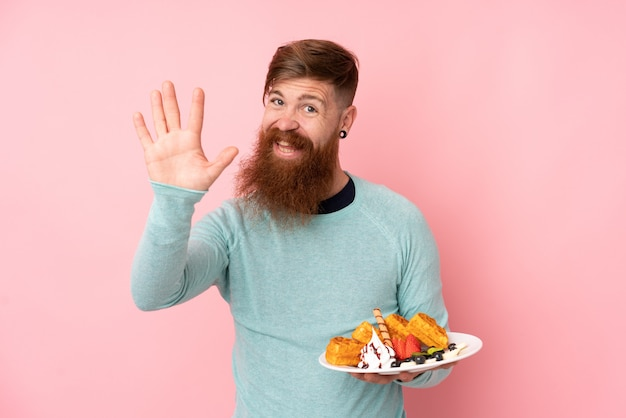 Rudzielec mężczyzna z długą brody mienia goframi nad odosobnioną menchii ścianą salutuje z ręką z szczęśliwym wyrażeniem