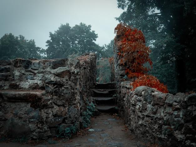 Ruiny muru obronnego średniowiecznego zamku na dolnym śląsku, polska