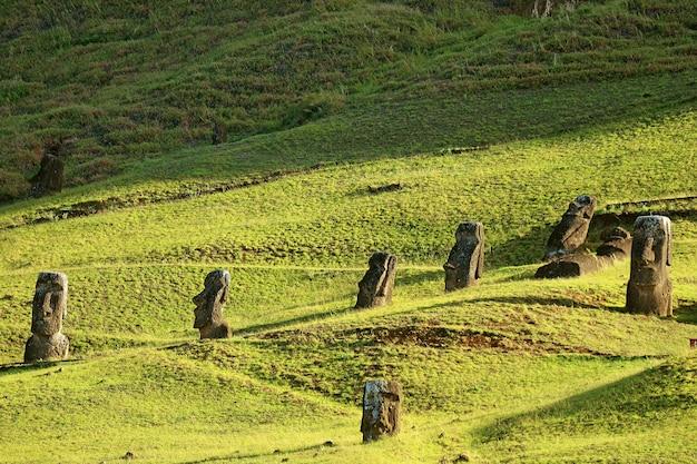 Ruiny posągu moai na zboczu wulkanu rano raraku dawny kamieniołom moai na wyspie wielkanocnej w chile