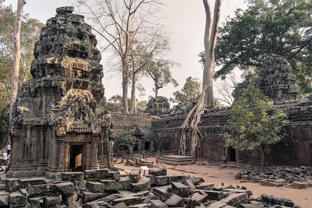 Ruiny świątyni angkor wat
