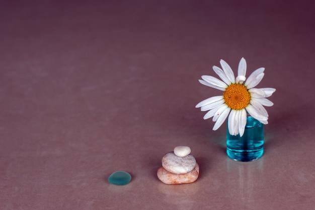 Rumianek tkwi w butelce z niebieskim aromatycznym olejkiem, trzema kamykami w kształcie piramidy i kawałkiem szkła